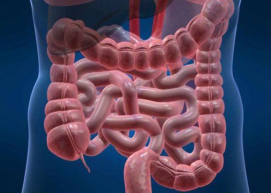 мрт кишечника вместо колоноскопии