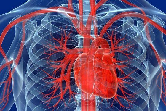 мрт сердца и сосудов с контрастированием